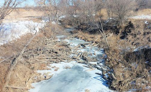 1.13 cfs at Sappa Creek near Lyle, KS on Jan. 15, 2015. Photo by Andrew Clark, USGS.
