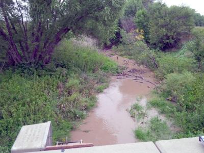 25.2 cfs at Sappa Creek near Lyle, KS on Sept. 8, 2016. Photo by Lori Marintzer, USGS.