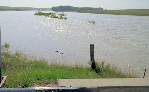2,960 cfs at Smoky Hill River near Arnold, KS on June 30, 2014. Photo by Lori Marintzer, USGS.