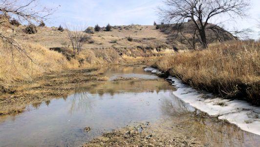 2.59 cfs at Saline River near Russell, KS on Jan. 28, 2013. Photo by Nathan Sullivan, USGS.