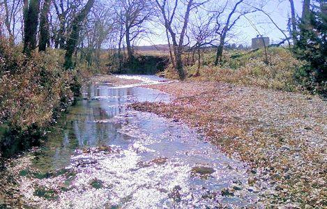 3.34 cfs at Kings Creek near Manhattan, KS on Mar. 23, 2010. Photo by Craig Painter, USGS.