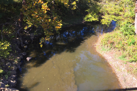 Up stream from the gage at Mill Creek near Riley, KS on October 12, 2016. Photo by Brad Lukasz, USGS.