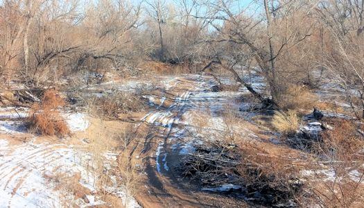 Dry riverbed at Arkansas River near Larned, KS on Dec. 1, 2015. Photo by Andrew Clark, USGS.