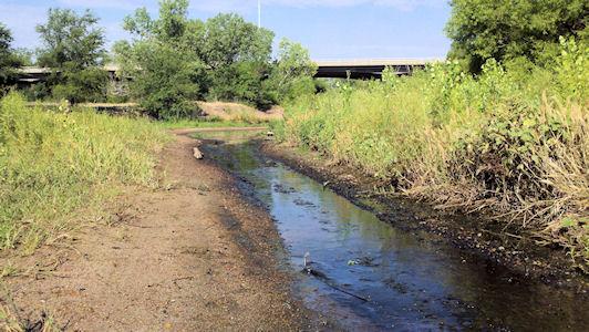 0.02 cfs at Arkansas River at Great Bend, KS on July 13, 2012. Photo by Nathan Sullivan, USGS.
