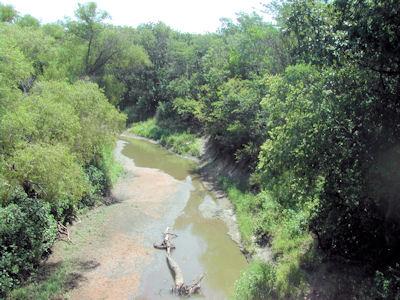 0.28 cfs at Little Arkansas River at Alta Mills, KS on July 17, 2012. Photo by Al Bewsher, USGS.