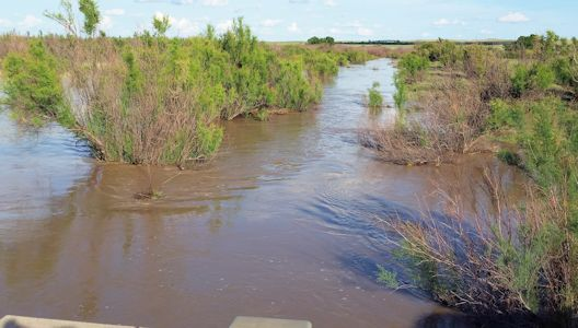 464 cfs at Crooked Creek near Englewood, KS on May 29, 2015. Photo by Slade Hackney, USGS.