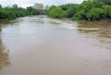 Little Arkansas River upstream of ASR Facility near Sedgwick, KS on July 30, 2013. Photo by Trudy Bennett, USGS.